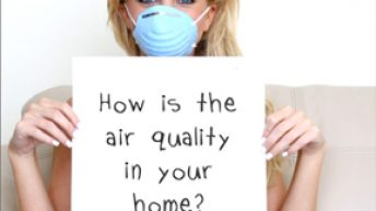 Healthy Home Mold and Mildew Free